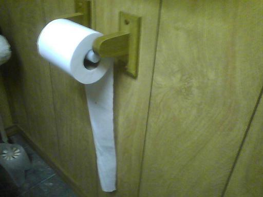 No+no+no+toilet+paper.JPG