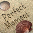 Perfect Moment Project