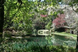 Explore Southern History Maclay Gardens Tallahassee