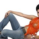 Sexy Photos Of Tapsi Pani   Miss India Finalist 2008
