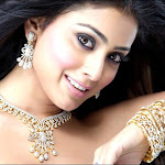 Shriya Saran Pretty  Gold  Dress