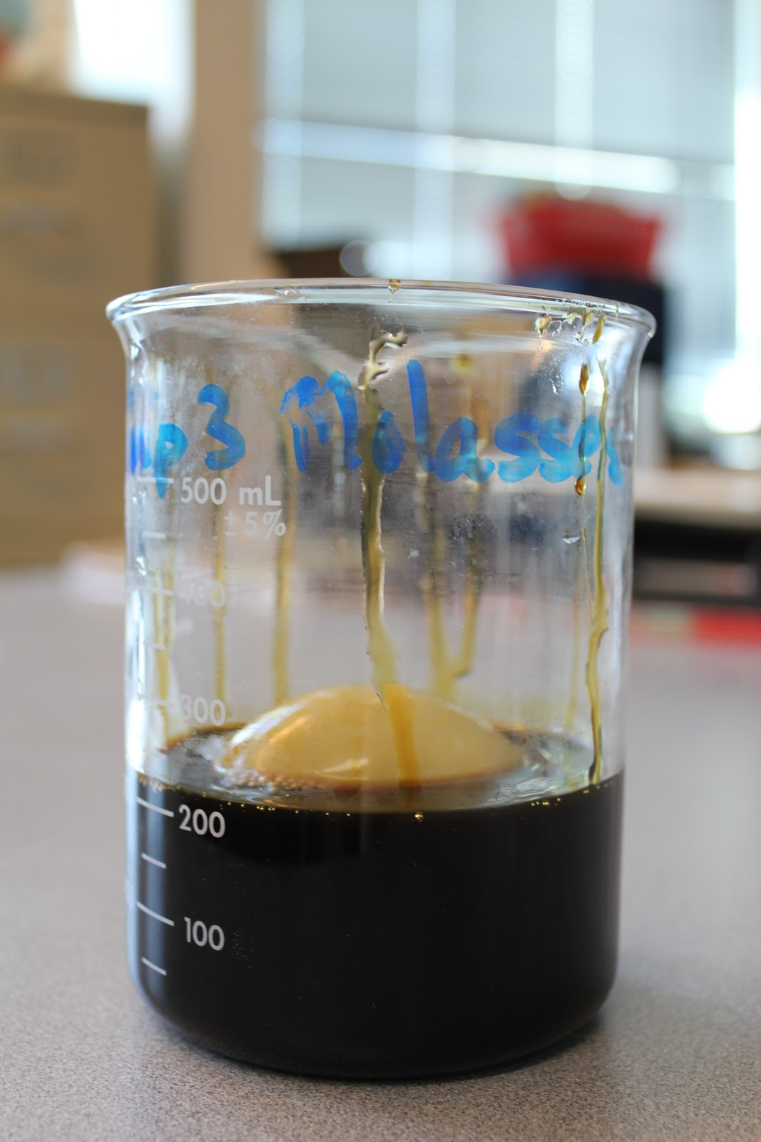 The Science Experience: Osmosis Egg Lab Part 1