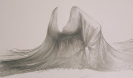 Study for Arrow Stabbed Vine by Mark Sheeky - Graphite pencil, chalk and charcoal on paper