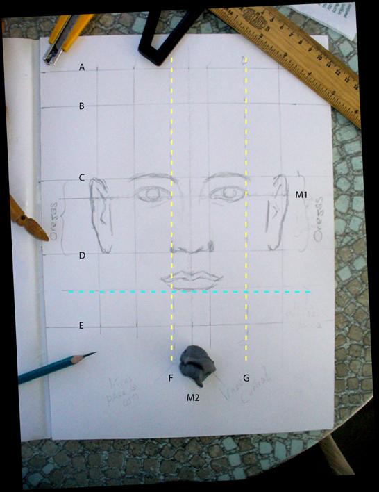 El taller de miguel angel como dibujar el rostro humano for Cuanto cobrar por pintar un mural