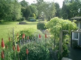 Front Garden June 2008