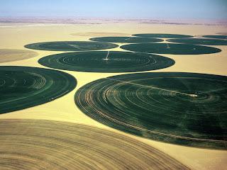 Resultado de imagem para agricultura israel deserto