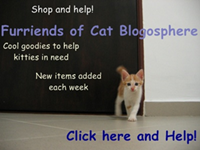 Furriends of Cat Blogosphere