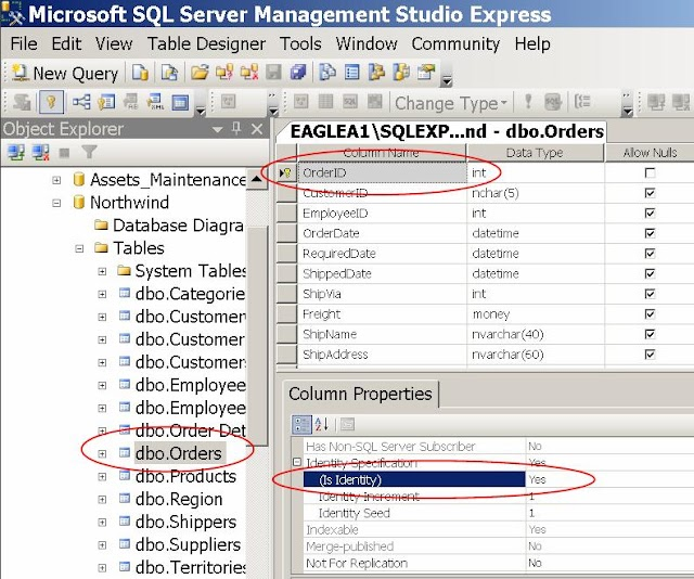 FAQ: MS SQL Server - How to generate a number automatically for the Primary Key when inserting a record?