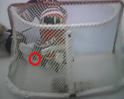 Was Malkin's non-goal a goal?