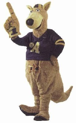 eccentric roadside roo ination zippy the university of akron s