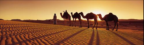 Chapitre 2: le Sahara