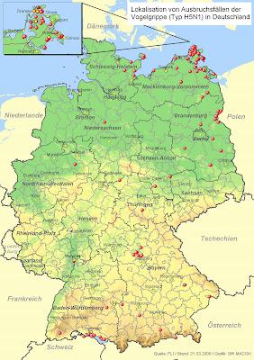 Landkartenblog Vogelgrippe In Deutschland 2006