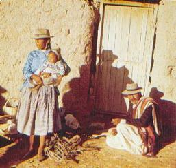 Indígenas- Collas