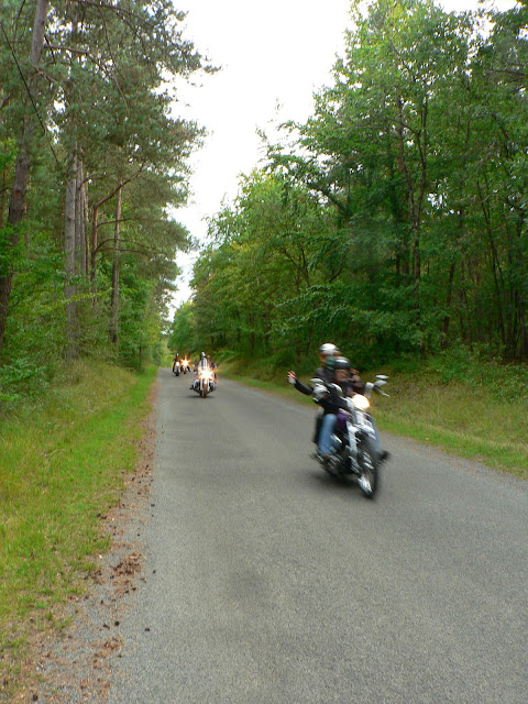 Larchant forêt des motard