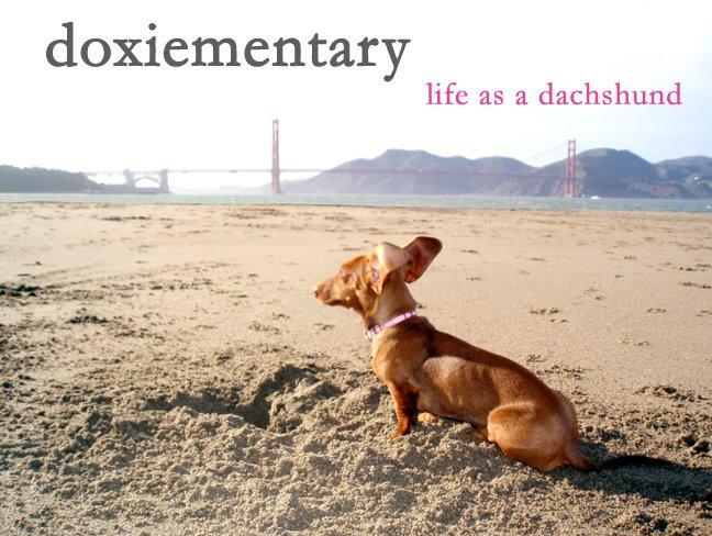 Doxiementary