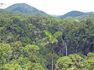 Erica Ridley in Costa Rica: La Fortuna rain forest canopy and waterfall
