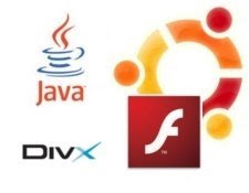 FREE! Download dan Install Codec Multimedia untuk Ubuntu 13.10 (Secara Offline)