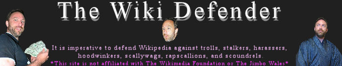 The Wiki Defender