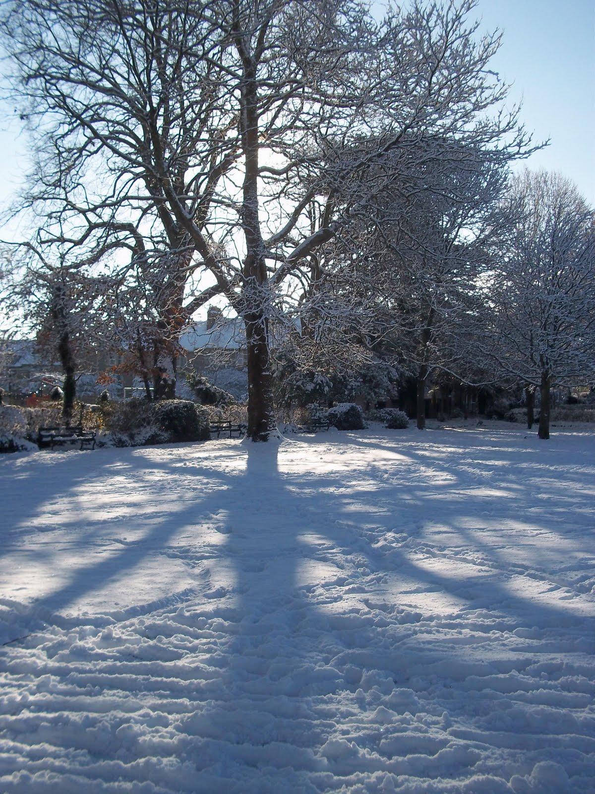 my blog: December 2010
