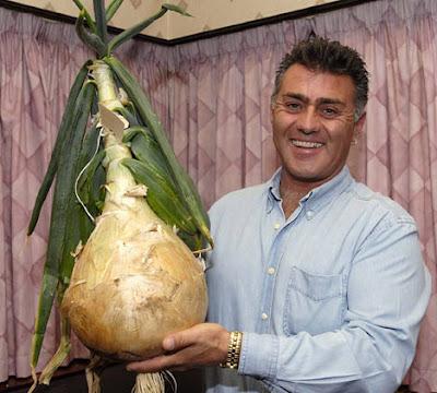 Британец вырастил луковицу весом почти в 7 килограммов
