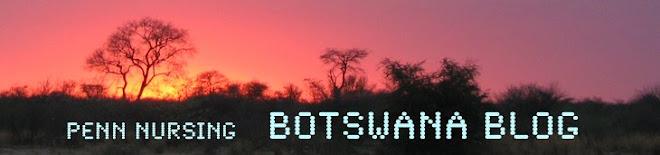 Penn Nursing - BotswanaBlog