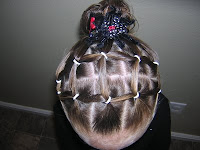spider web hairdo