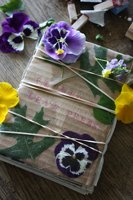 Make a Portable Flower Press for Your Herbarium