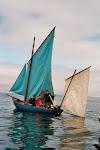 Bombotte au travail - pêche aux Dorades à la palangre - c'est possible à la voile..-