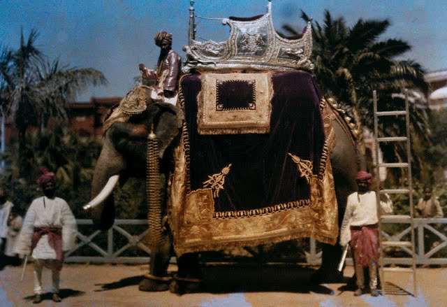 Men stand near royal elephant groomed before howdah put in place - 1929