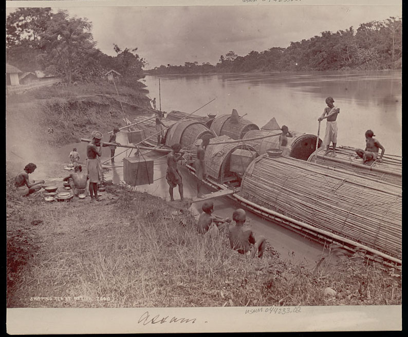 Assamese Men in Costume Loading Tea Onto Bamboo Boats
