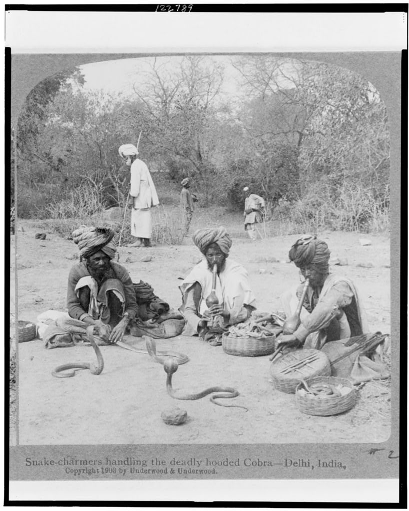 Snake charmers handling the deadly hooded cobra - Delhi, India - 1903