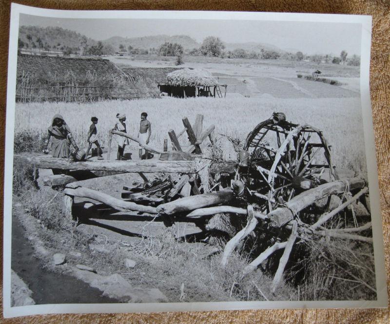 Indian Rural Farming - Rajasthan 1957