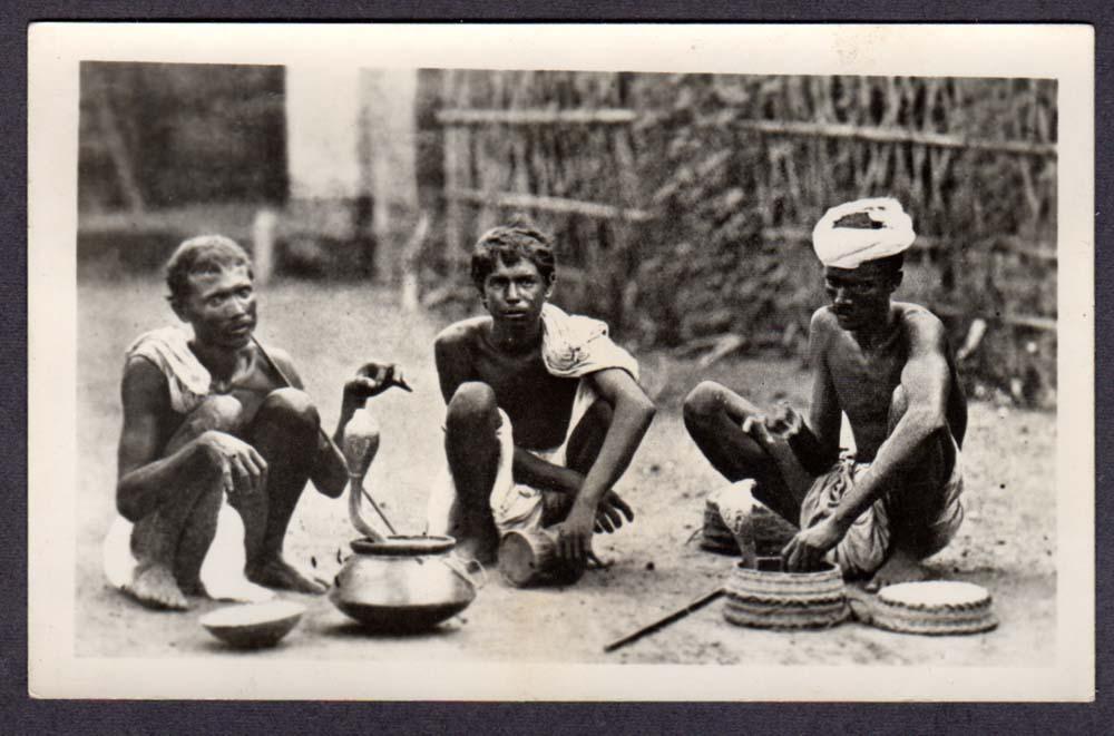 Indian Snake Charmers -  Vintage Postcard