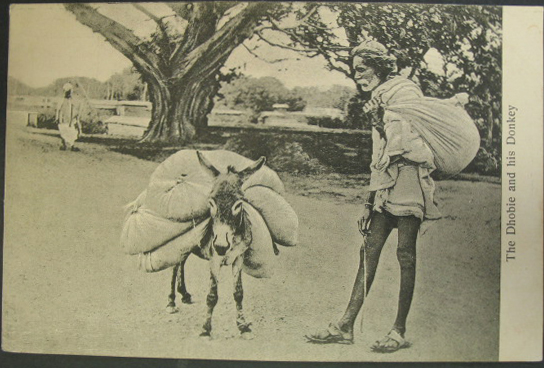 The Dhobie & His Donkey - India 1910s Postcard
