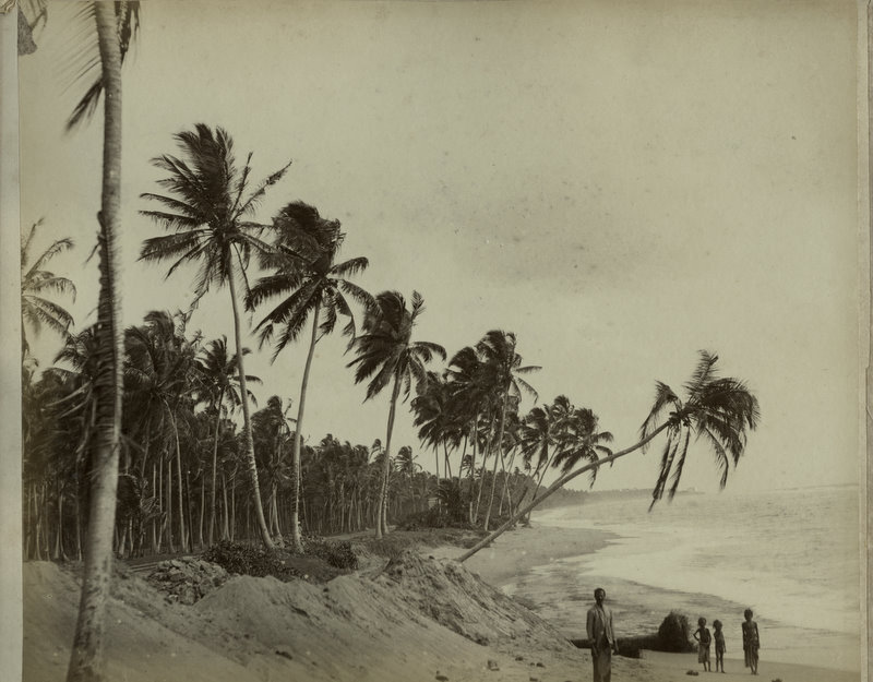 Sri Lanka (Ceylon) Beach View - 1880's