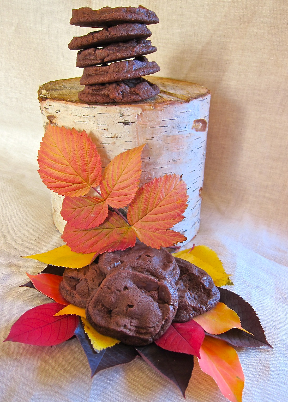 Chocolate Cookies Americas Test Kitchen