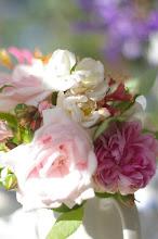Rosor från vår trädgård