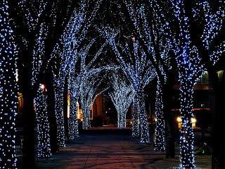 čestitke za božić novu godinu slike Božićne slike i e card čestitke: Ukrašena stabla za Božić i Novu  čestitke za božić novu godinu slike