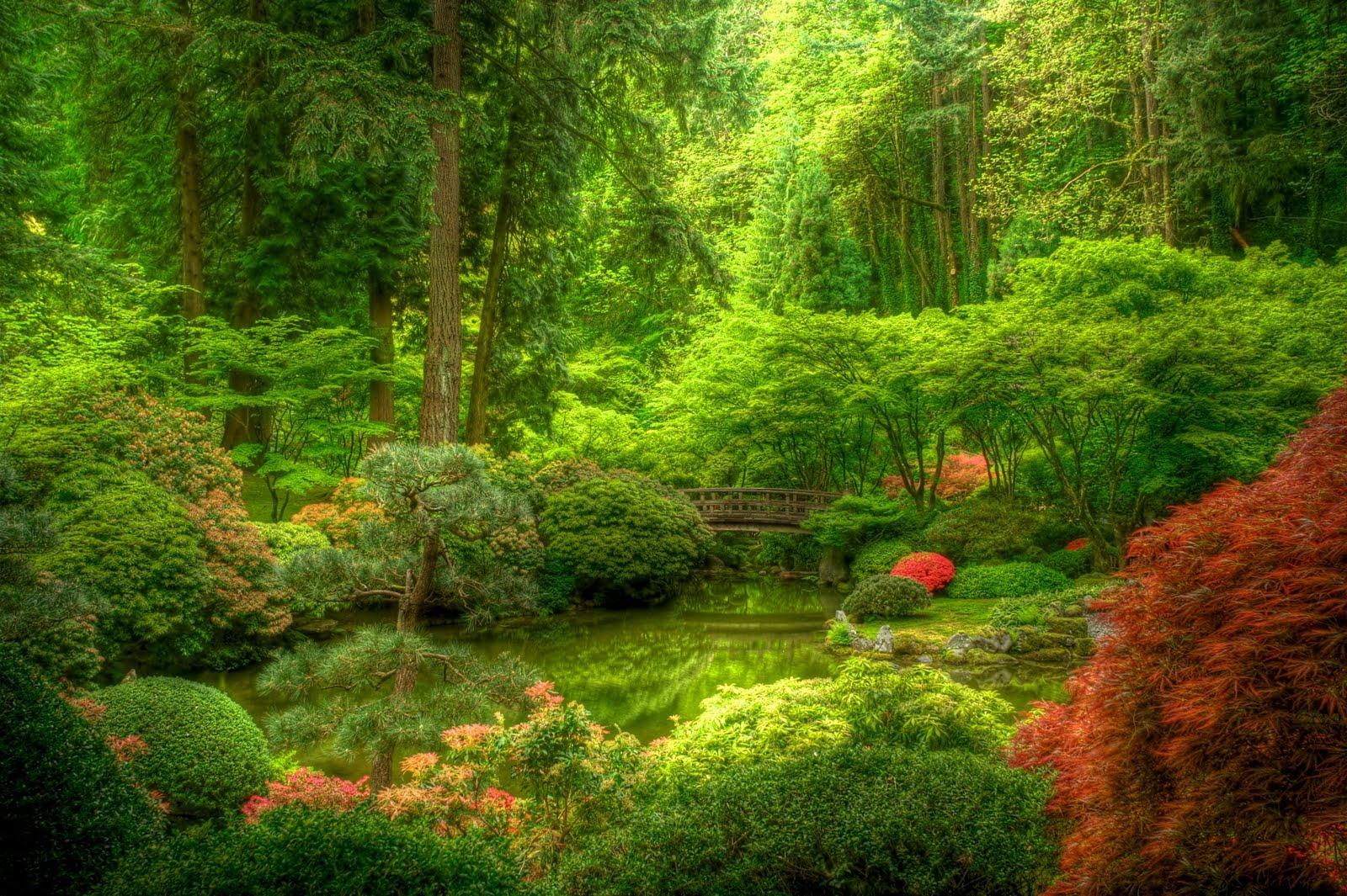 T-Stop Photography: Portland Japanese Garden