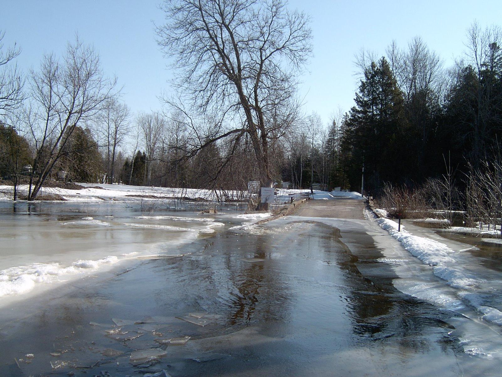 Bare Oaks Spring Flood
