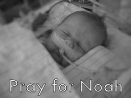 PRAY FOR NOAH
