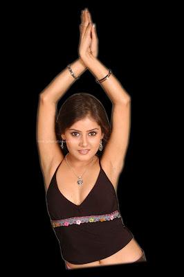 indian sexy actress gallery goa beach bikini hot girls