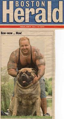 Hercules O maior cachorro do mundo   Curiosidades