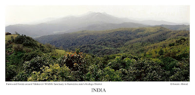 The hill forests of Talakaveri wildlife sanctuary in Karnataka's Kodagu (Coorg) District along its borders with Kerala