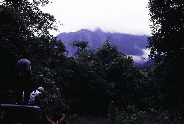 Pushpagiri massif in Coorg (Kodagu) as seen from the rainforests of Bisle Reserve Forest, Sakleshpur taluk, Hassan District in the Netravathi river basin