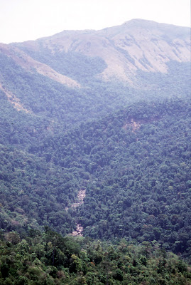 The dry Kumaradhara river bed and the surrounding evergreen forests as seen from Bisle view point in Hassan District's Sakleshpur taluk. Kumaradhara river separates Bisle reserve forests (left) from Pushpagiri wildlife sanctuary (right).