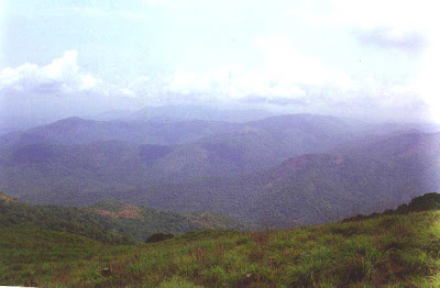 Rainforests of Pushpagiri wildlife sanctuary and forested hills of Hassan and Dakshina Kannada as seen from Girigadde below Kumara Parvata peak in Western Ghats