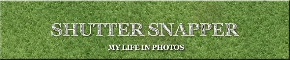 Shutter Snapper