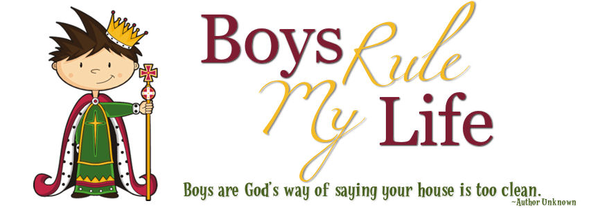 Boys Rule My Life