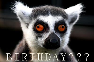 Happy Birthday Lemur Meme Wwwpicturessocom